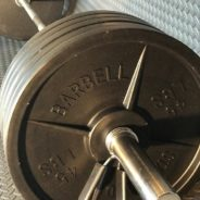 Where to buy Fake Weights™?