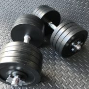 Fake Weights – Olympic Style Weights