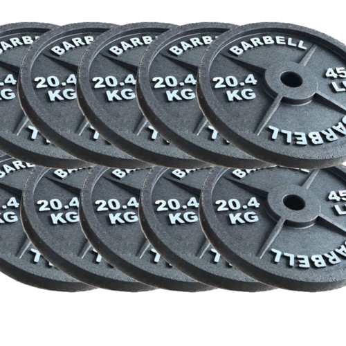 fake 45 lb barbell plates